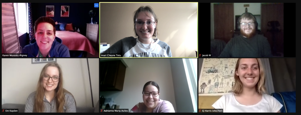 The accessibility committee meeting in Zoom